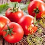 как вырастить большой урожай помидоров в теплице