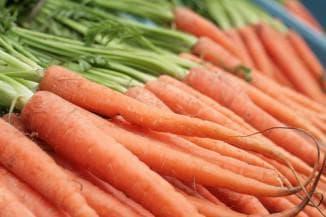морковь сорта для Сибири