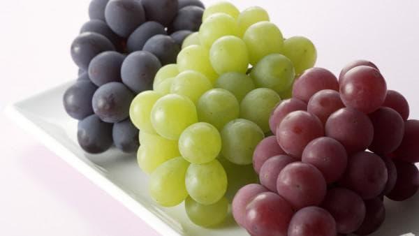 Лучшие технические сорта винограда для средней полосы