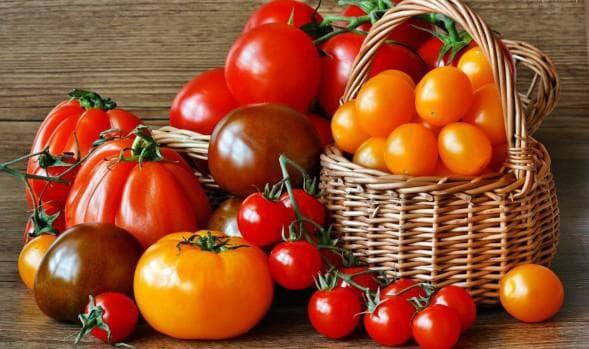 Семена томатов без пасынкования для открытого грунта