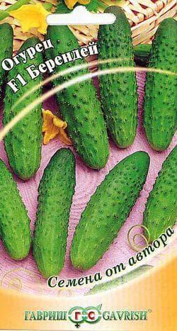 семена огурцов Берендей
