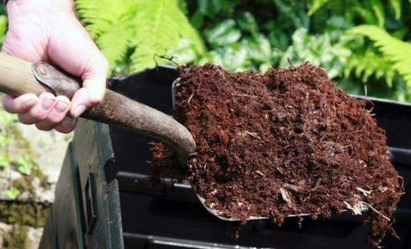 перегной из растительности и навоза
