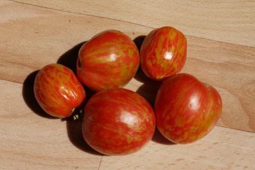 помидоры сорта Дон Жуан