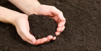 почва для огурцов
