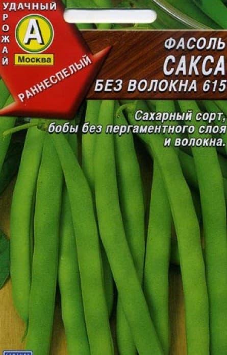 фасоль сорта Сакса 615
