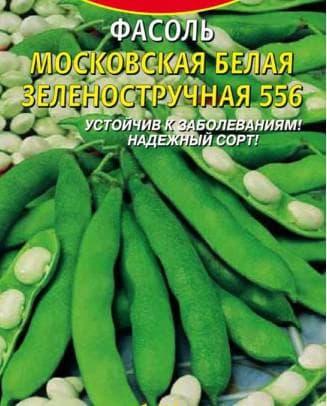 фасоль Московская белая зеленостручковая 556