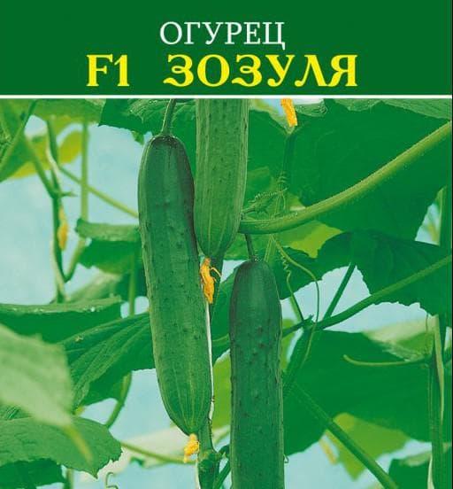 семена Зозуля F1