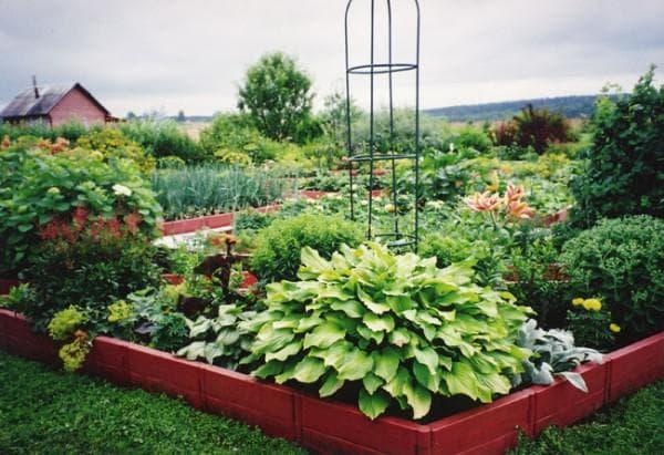 ограждение для грядок из садовой доски