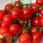 можно ли сажать томаты после томатов