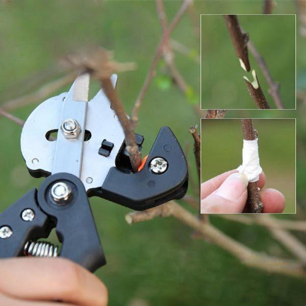 Нож для прививки деревьев: как выбрать инструмент для окулировки