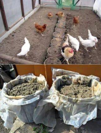 куриный помет удобрение пропорции