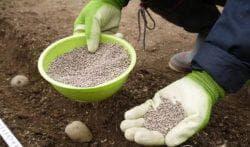 применение удобрение мочевина