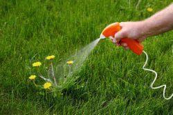 использование гербицида