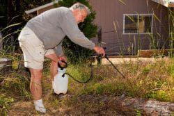 гербицид на огороде