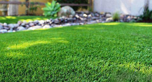 Химия чтобы не росла трава