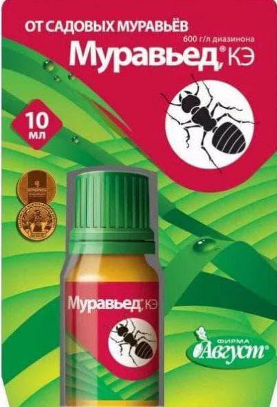 муравьед от муравьёв