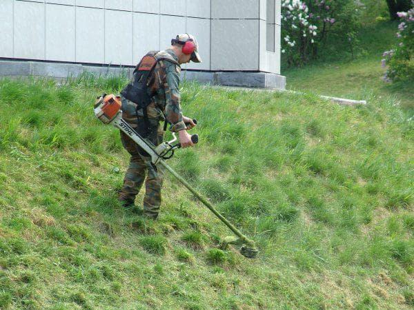 скашивать траву на участке