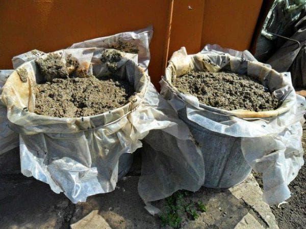 компост из перепелиного помета как удобрение