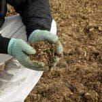 состав удобрения сульфат калия