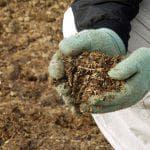 удобрение из яичной скорлупы для рассады