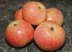 красивые и сочные яблоки