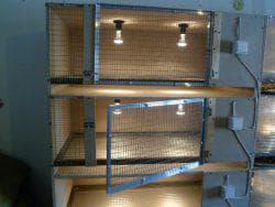 освещение и вентиляция для утки