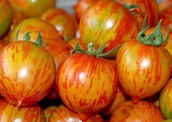 томат персик
