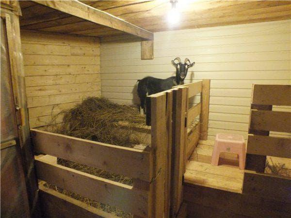 помещение для коз