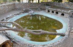 вольер для нутрий с бассейном