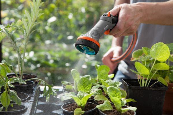 использование пульверизатора для растения