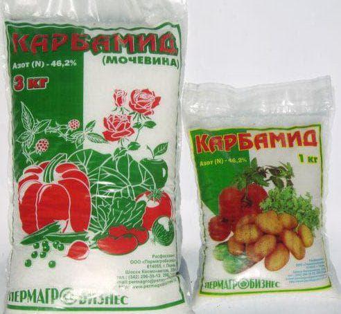 азот для томатов