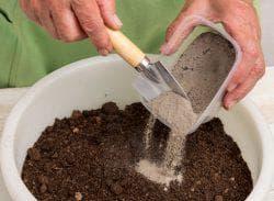 почва для высадки капусты