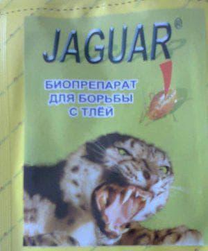 ягуар от тли