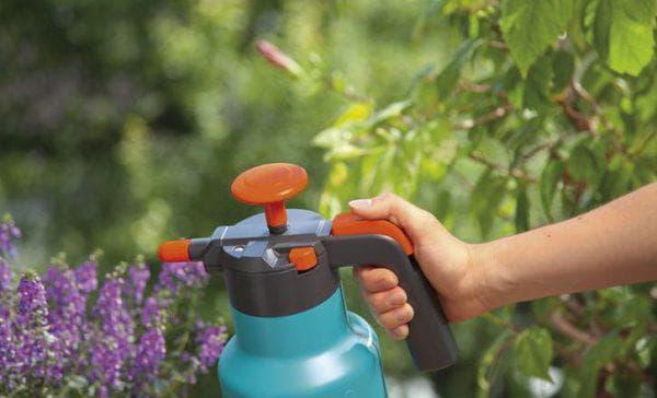 опрыскивания растения