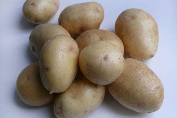клубни картофеля невский