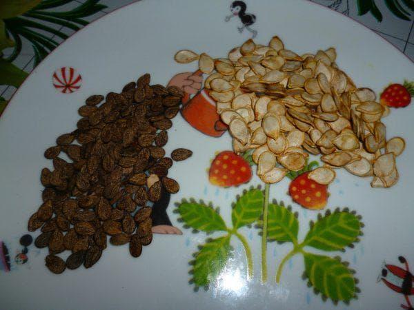 калибровка семян арбуза