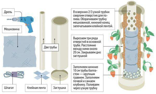 выращивание клубники в трубах пвх вертикально