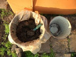 подкормка куриным пометом огурцов