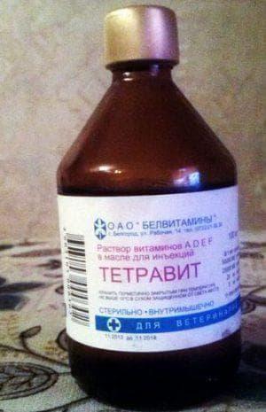 лекарство Тетравирт