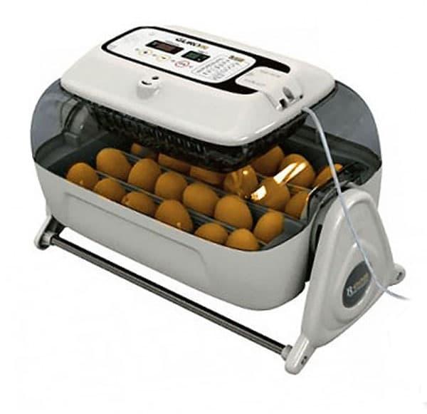 автоматический инкубатор для куриных яиц