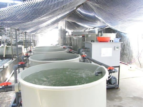 модульные емкости для накопления воды в узв