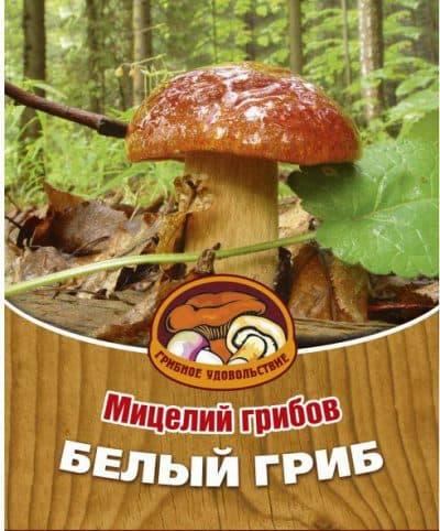посадочный материал для белых грибов