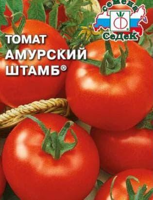 помидор Амурский штамб
