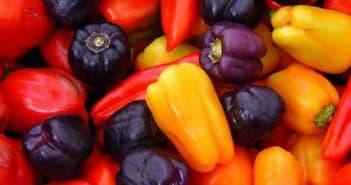 Лучшие сорта перцев