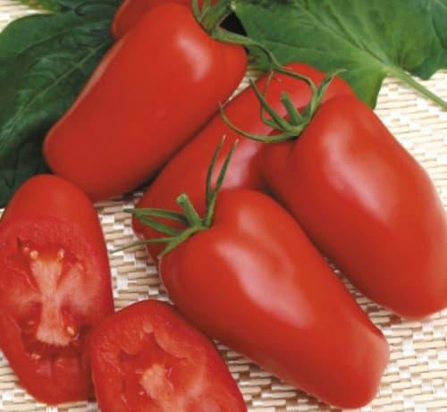 помидоры сорта Томат Гаспачо