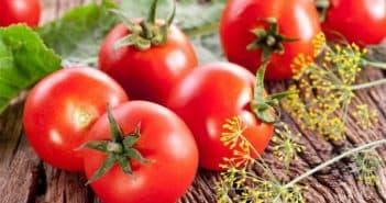 детерминантные штамбовые сорта томатов