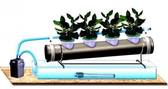 гидропоника в домашних условиях для зелени
