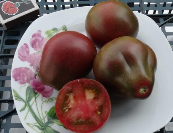 томат Винный кувшин