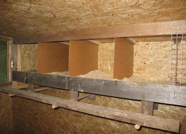 двойная конструкция гнездо для кур