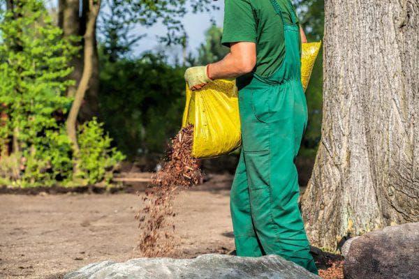 удобрение помётом плодовых деревьев